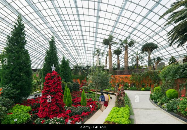 Singapore The Botanic Garden Stockfotos & Singapore The Botanic ...