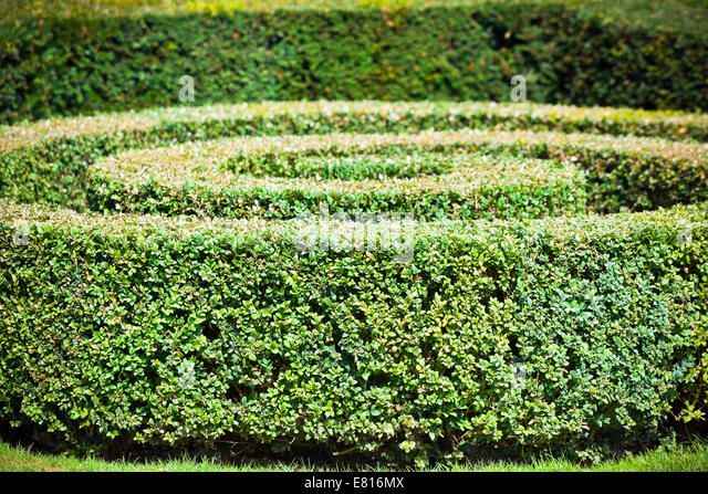maze garden stockfotos maze garden bilder alamy. Black Bedroom Furniture Sets. Home Design Ideas