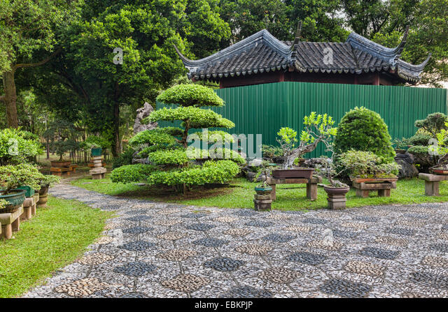 bonsai trees in bonsai garden stockfotos bonsai trees in bonsai garden bilder alamy. Black Bedroom Furniture Sets. Home Design Ideas