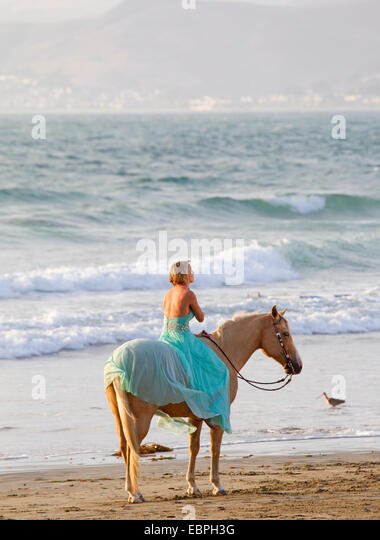 model horse stockfotos model horse bilder alamy. Black Bedroom Furniture Sets. Home Design Ideas