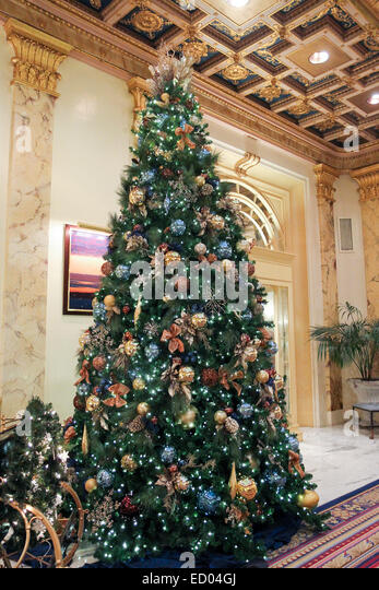 lobby christmas tree stockfotos lobby christmas tree. Black Bedroom Furniture Sets. Home Design Ideas