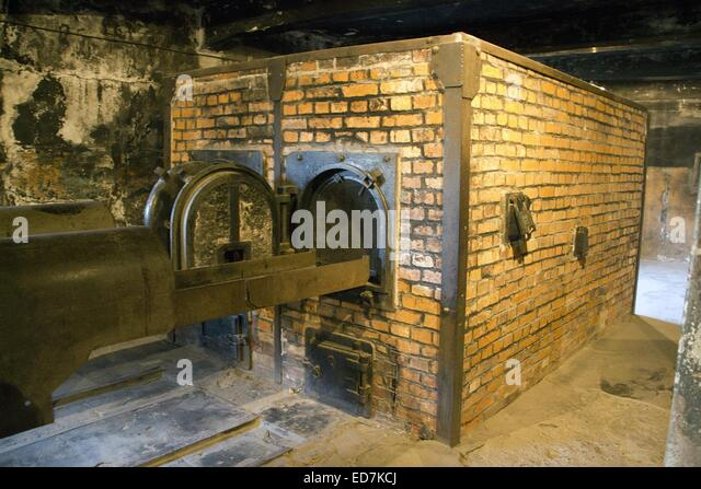 auschwitz bodies stockfotos auschwitz bodies bilder alamy. Black Bedroom Furniture Sets. Home Design Ideas