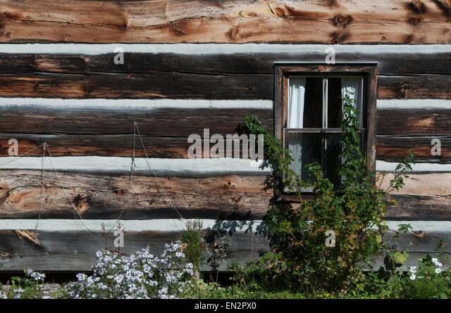 holzdach abdichten flachdach gartenhaus abdichten tipps und anleitung gartenhaus flachdach. Black Bedroom Furniture Sets. Home Design Ideas