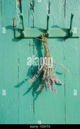 bunch lavender hanging on old stockfotos bunch lavender hanging on old bilder alamy. Black Bedroom Furniture Sets. Home Design Ideas