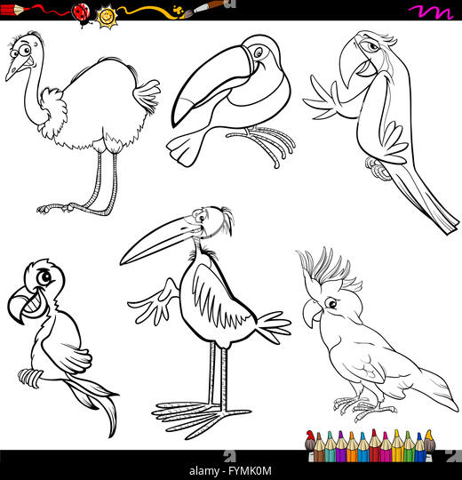 Schön Blaue Vogel Malvorlagen Fotos - Ideen färben - blsbooks.com