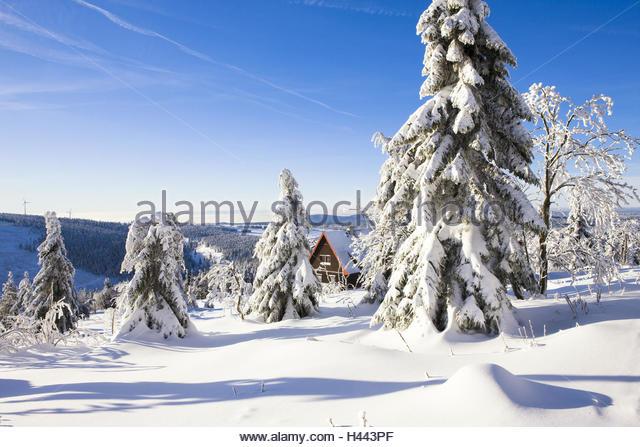 Kostenloses Foto: Erzgebirge, Winter, Seiffen, Schnee ...
