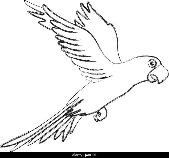 Großzügig Blaue Macaw Malvorlagen Bilder - Beispiel Wiederaufnahme ...