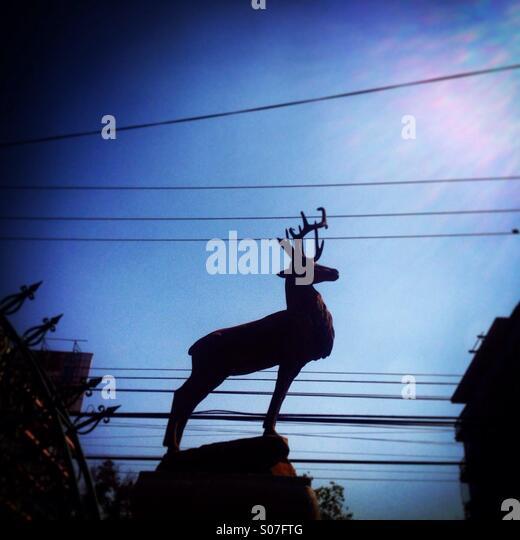 skulpturen aus blumen park mexiko – nomadx,